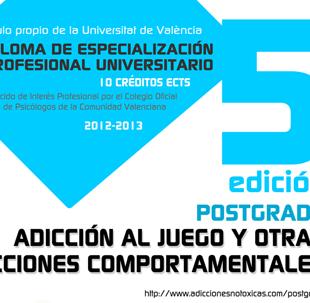 prev_cartel_postgrado_juego_2012_13